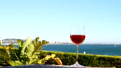 Glass of Rose Wine & Seaview - stock footage