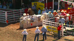 Rodeo, steer wrestling, #2 Stock Footage