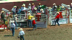 Rodeo, bareback bronc riding loses hat, #1 Stock Footage