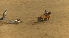 Rodeo, kids wild pony race  Stock Footage