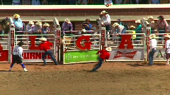 Rodeo, Brahma bull riding, #8 spinner and buck Stock Footage
