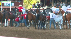 Rodeo, chuckwagon race, #2 Stock Footage
