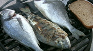 Fresh Fish in Barbecue1   Full HD 1080p Stock Footage