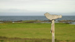 Seal sign at the view point - HD 1920 X 1080 Stock Footage
