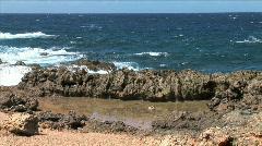 Aruba Ironshore Tidal Pool Stock Footage