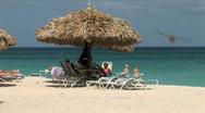 Beach Palapa-zoom Stock Footage