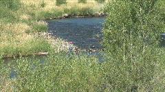 Deer Creek Fishing-ws-zoom Stock Footage