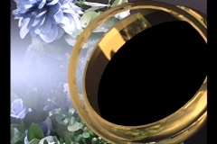 3516 Blue Flowers Rings Picture Frame Stock Footage