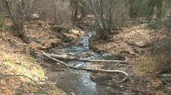 Frijoles Creek-ws-zoom Stock Footage
