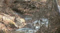 Frijoles Creek-zoom Stock Footage