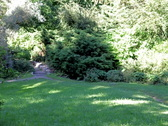 Young happy woman running through the garden , slow motion   Stock Footage
