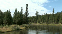 Madison River-zoom Stock Footage