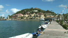 Marigot Pier-Zodiac Leaves Stock Footage