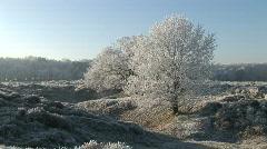 Frozen landscape 4 Stock Footage