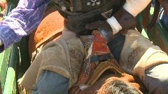 Rodeo, bareback bronc rider tightning grip Stock Footage