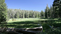 meadow pond Sierra Nevada - stock footage