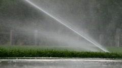 Sprinklers in a park - stock footage