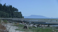 Stock Video Footage of Crescent Beach, White Rock, Surrey, Vancouver area, Canada