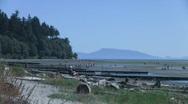 Crescent Beach, White Rock, Surrey, Vancouver area, Canada Stock Footage