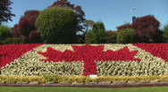 Stock Video Footage of Canadian Flag made from Flowers