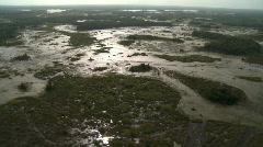 Aerial Florida Wetlands - stock footage