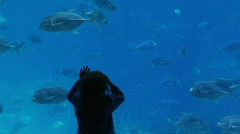 Young girl enjoys watching fish in the aquarium  Stock Footage