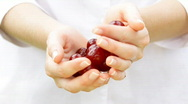 Fresh cherries in woman's hands.Close up. Stock Footage