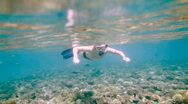 Snorkeler diving along the brain coral Stock Footage