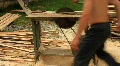Sawmill operator HD Footage