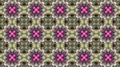 Gorgeous oriental flower lotus fancy gem background.Buddhism Mandala flower,kale Stock Footage