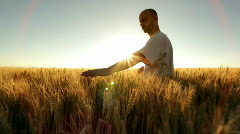 farmer in wheatfield - stock footage