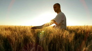 Farmer in wheatfield Stock Footage