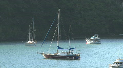 Picton, New Zealand Stock Footage