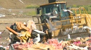 Stock Video Footage of the environment, garbage dump, #24 tractor and compactor, tight shot