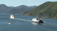 Stock Video Footage of Ferries leaving harbor Picton, New Zealand