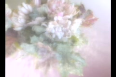 4505 Pastel colored flowers rotating around Stock Footage