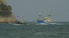 Fishing Boat and Seagulls 3 Stock Footage
