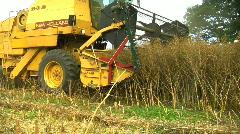 Combine Harvester gathering Rape seed crop Stock Footage