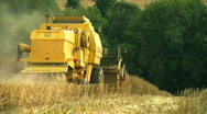 Stock Video Footage of Combine Harvester gathering Rape seed crop
