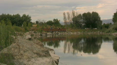 Small Pond With Bridge in Background Stock Footage