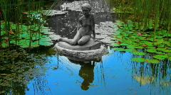Fairy Tale Pond Stock Footage