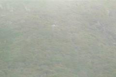 Mist over coastal landscape V3 - NTSC Stock Footage