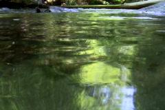 Montain stream V1 - NTSC - stock footage
