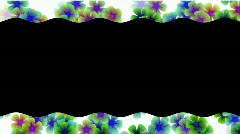 Color wild flower lace.floral,petals,romance,valentine, Stock Footage