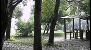 Rain and sun in a park Stock Footage