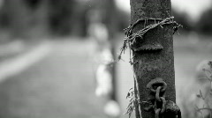 Metal fence with barbed wire, wound on a rusty iron pipe Stock Footage