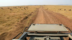 Driving on African Safari (HD) m Stock Footage