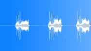 Stock Sound Effects of camera sound 02