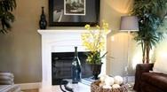 Luxury Living Room 3 Stock Footage