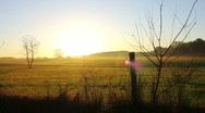 FenceLine Sunrise Stock Footage